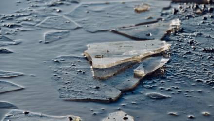Взял удочку, топор и сказал, что идет рыбачить: в Гомеле установили личность человека, провалившегося под лёд на заливе Сожа