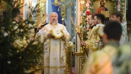 Архиепископ Гомельский и Жлобинский Стефан поздравил белорусов с Рождеством