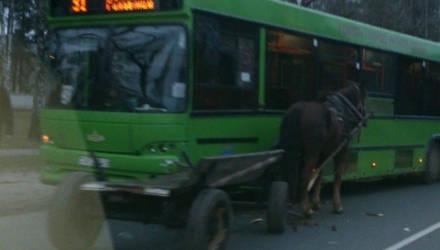 И такое бывает: в Гомеле столкнулись автобус и телега
