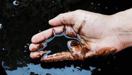 Три новые залежи нефти открыты на Гомельщине