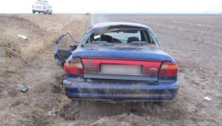 В Лоевском районе девушка на Ford при обгоне врезалась во встречную Audi