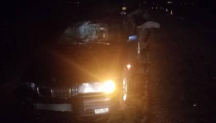 Недалеко от Речицы под колёсами BMW погиб пешеход