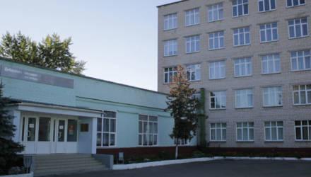 Из окна Добрушского лицея выпал заместитель директора