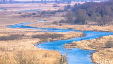 Половодья не будет: сегодня водность Припяти в два раза меньше нормы