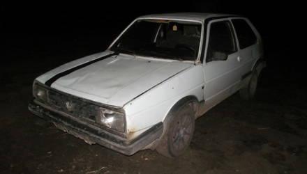 ДТП с лосём: в Рогачёве осуждены трое сельчан