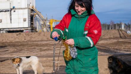 Бригада Светлогорского управления буровых работ Сергея Радченко не только строит второй куст скважин, но и создаёт сад камней