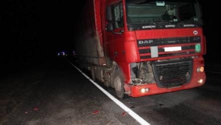 В Добрушском районе в результате ДТП погиб велосипедист