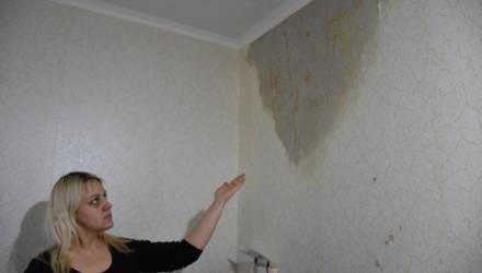 Под Гомелем дождь неожиданно проник в квартиру местной жительницы и устроил потоп. Что говорят коммунальные службы?
