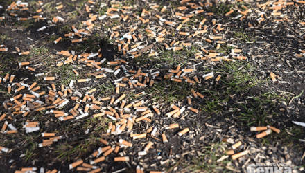 Фотофакт: из-за сигаретных окурков в гомельском дворе не растёт трава