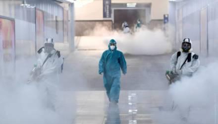 Число погибших от коронавируса в Китае превысило 800 человек