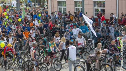 Велосипедисты и пешеходы делят тротуар. Как гомельчанам избегать конфликтов?