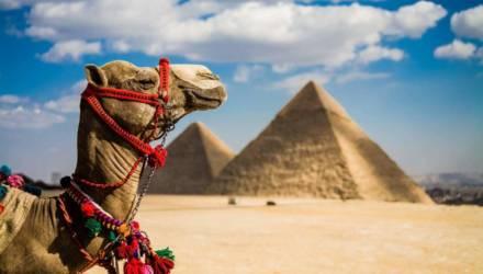 Египет всё: туристическая страна прекратит авиасообщение с 19 марта