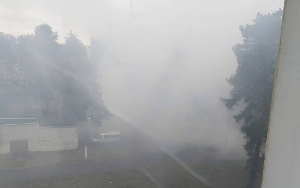 В Светлогорске несколько дней жгут костры прямо в жилом дворе. Люди говорят, что задыхаются от дыма