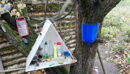 К двум годам заключения приговорён мужчина, живший отшельником в Рогачёвском районе