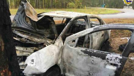Пьяные гомельчанин, таксист и несовершеннолетний врезались в дерево, авто загорелось. Уголовное дело направлено в суд