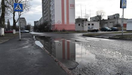 Уберите аварийные тополя и постройте дорогу в Шведскую Горку. О чём просят жители Любенского микрорайона