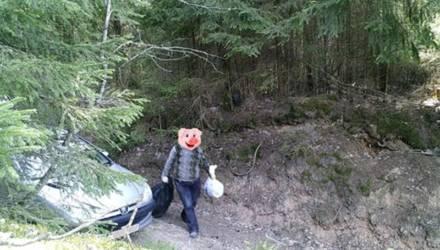 Фотоловушки в лесах Гомельской области засняли 145 нарушителей в 2019 году