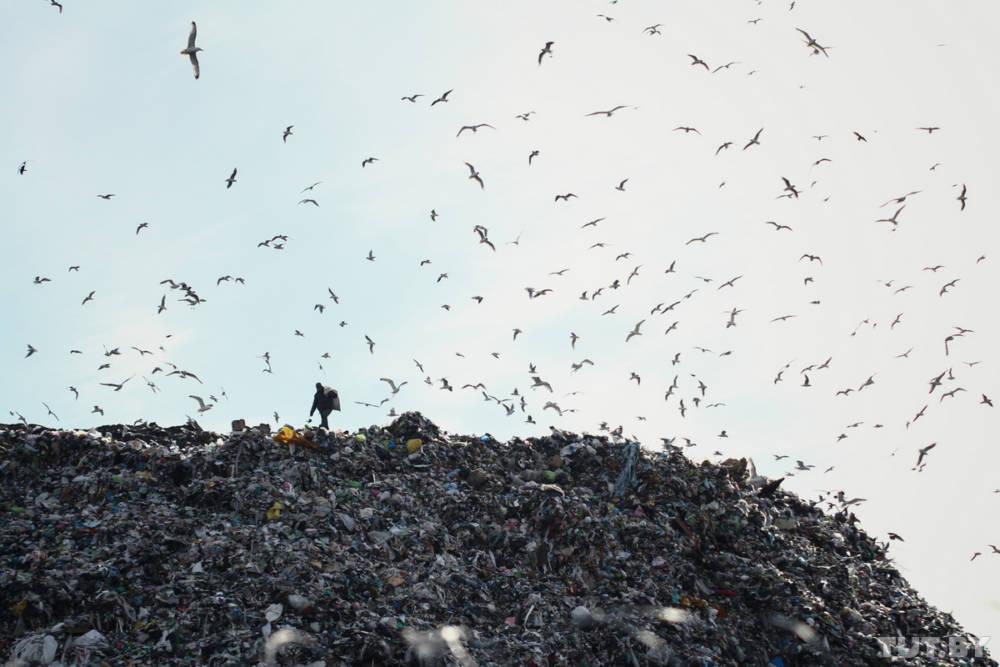 Как на полигоне под Гомелем работает новая технология по производству электроэнергии из мусора