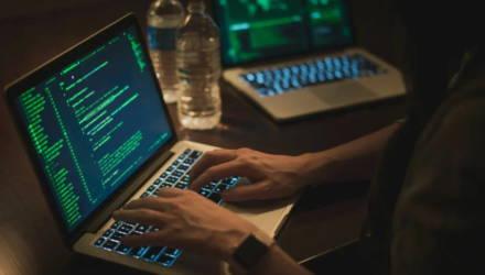 Гомельская область стала лидером по росту числа киберпреступлений