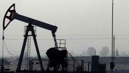 """Девять залежей нефти открыли геологи """"Белоруснефти"""" гомельской области за последние два года"""