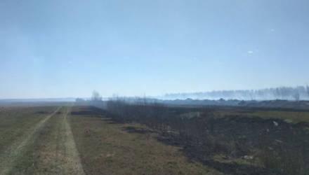 В Калинковичском районе третий день тушат торфяной пожар