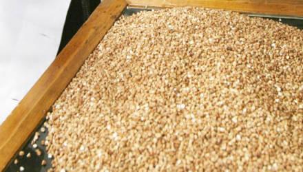До 14% веса не хватало в партиях фасованных продуктов в магазинах Гомельской области