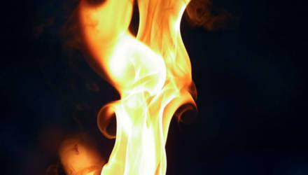 Пожар на фермерском хозяйстве в Речице повредил 20 кубометров дров