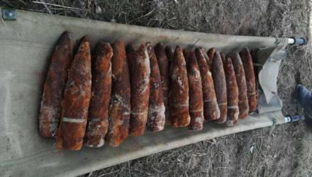 В Жлобинском районе найдены 44 снаряда времен Великой Отечественной войны