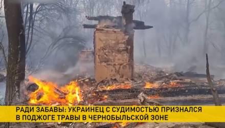 Ради забавы: украинец с судимостью признался в умышленном поджоге травы в Чернобыльской зоне