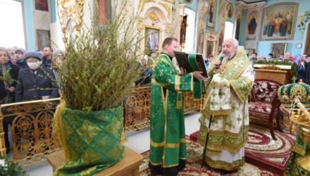 У православных Вербное воскресенье. Как освятить вербу дома и что делать в этот день