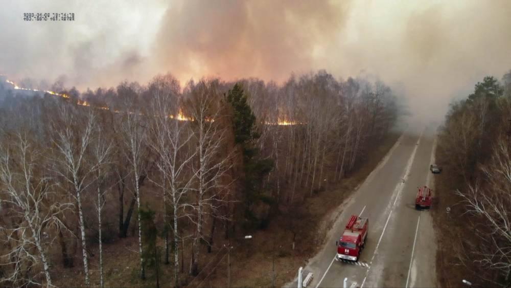 Подняли авиацию: в Чернобыльской зоне уже неделю тушат лесной пожар