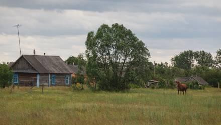 Сын с невесткой из Гомельской области приехали проведать бабушку и заразили её