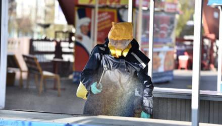 Торговые места на рынках «Кирмаша» в Гомеле дезинфицируют, не дожидаясь санитарного дня