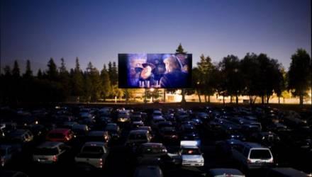 В Гомеле открывается кинотеатр под открытым небом