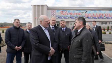 Лукашенко считает целесообразным вернуться к проекту строительства железной дороги на юге Беларуси