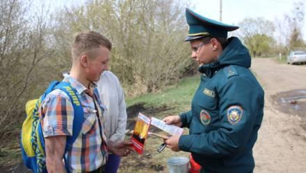 В Гомельском районе работники МЧС провели рейд по предупреждению весенних палов травы
