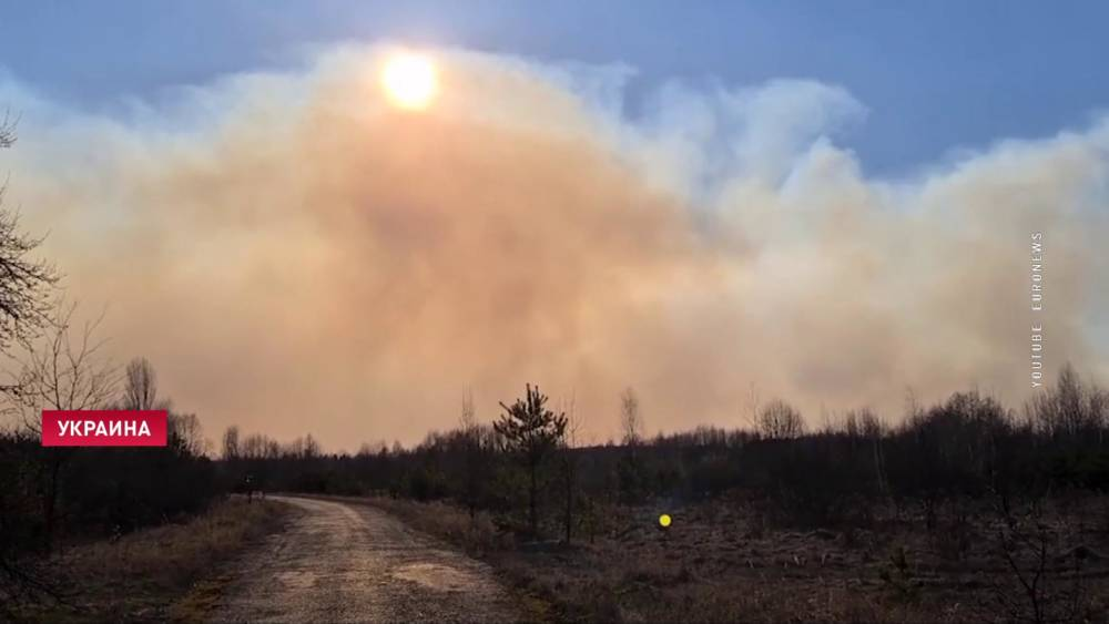 В Украине горят леса в зоне отчуждения. На территории Гомельской области повышения радиационного фона пока не зафиксировано