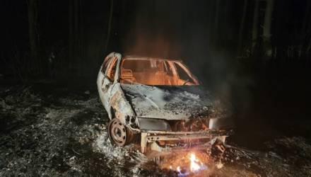 Гомельщина в огне: горят автомобили, дома, леса и трава