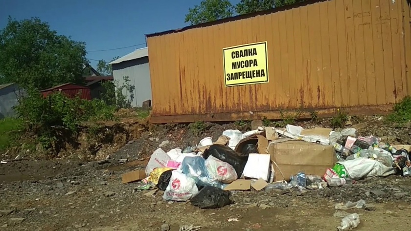 За первый квартал этого года госсаннадзор Гомельской области выявил около 4 тысяч нарушений санитарного содержания территорий