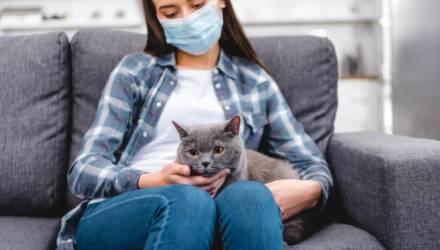 Белорусский психотерапевт рассказал, какую пользу можно извлечь из коронавируса