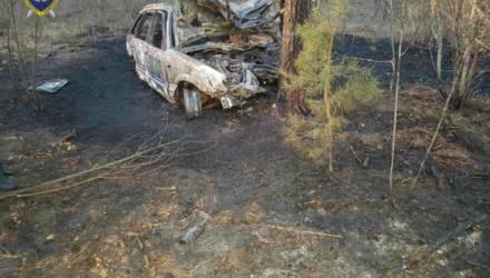 В Ветковском районе автомобиль врезался в дерево. Все пассажиры сгорели
