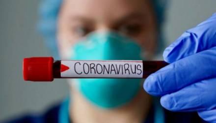 В Буда-Кошелёвском районе подтверждено 5 случаев заболевания COVID-19