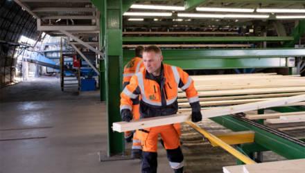 Эстонские хозяева «Витебской лесопилки» заняли 15 млн евро на новый завод в Мозыре