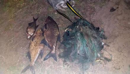 На водоёмах Петриковского района за ночь задержали пятерых браконьеров