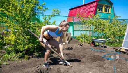 Лунный календарь садовода-огородника на май. Лучшие дни для посадок – в начале месяца