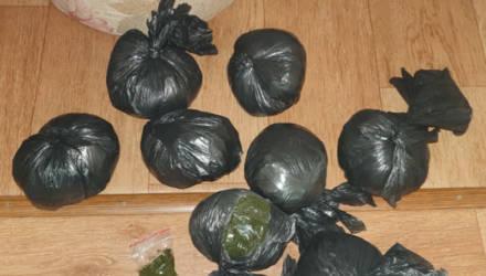 Сотрудники наркоконтроля изъяли у гомельчанина около 4 кг насвая