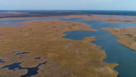 Сколько денег «затоплено» в Светлогорском водохранилище и для чего оно было построено?