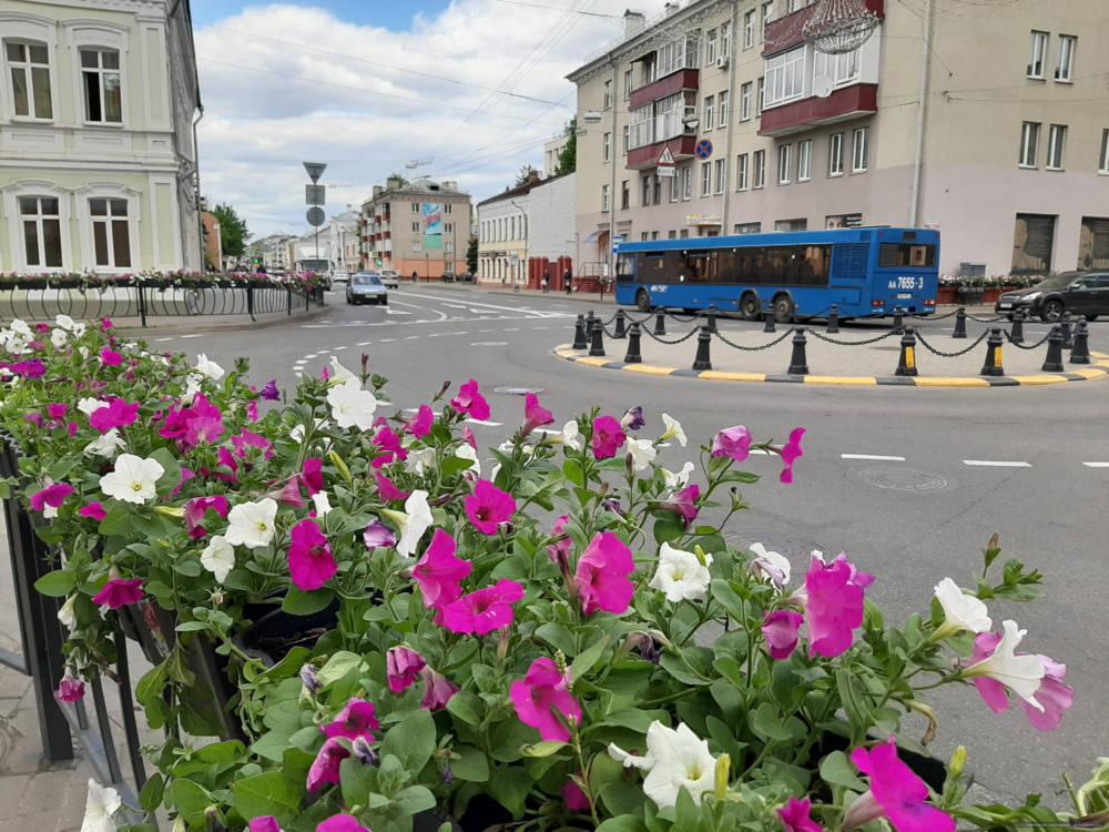 Фотофакт: улица Кирова в Гомеле расцвела