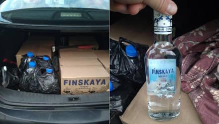 Гомельские гаишники изъяли 70 бутылок водки и 20 литров спирта у водителя из Речицы