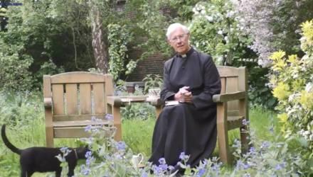 Священник записывал утреннюю молитву, когда сквозь него решил пройти кот, сделав это видео вирусным